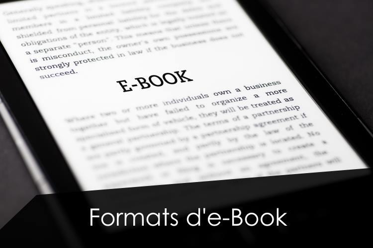 formats-ebook